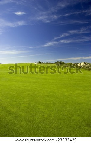beautiful meadow with Green grass and blue sky
