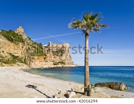 Beautiful Mediterranean cove located in the Costa Blanca of Spain, with a palm tree on the foreground - stock photo