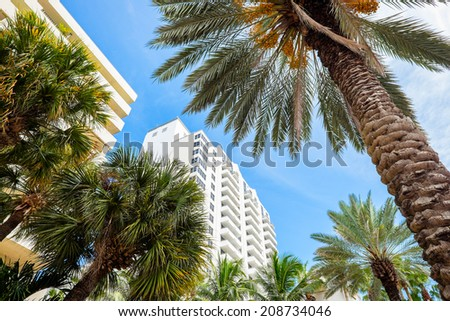 Beautiful Miami Beach cityscape with palm trees and art deco architecture. - stock photo
