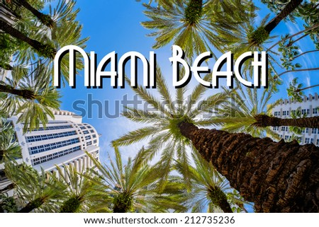 Beautiful Miami Beach fish eye cityscape with palm trees and art deco architecture. - stock photo