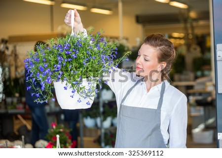 Beautiful mid adult female florist holding flower plant in shop - stock photo