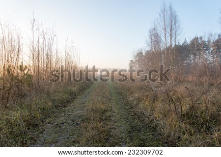 beautiful misty meadow in the morning frost in country - stock photo