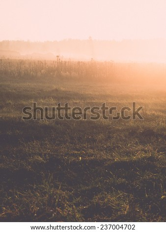 beautiful misty meadow in the morning frost in country - retro, vintage style look - stock photo
