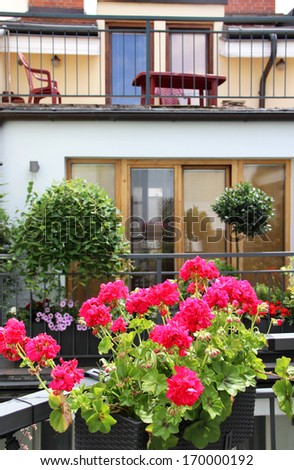 Beautiful modern terrace with a lot of flowers and herbs - stock photo