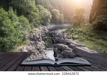 Beautiful morning landscape image of sunlight through trees into canyon creek below conceptual book image - stock photo