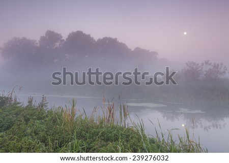 Beautiful morning mist landscape near a small river. - stock photo