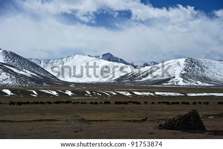 beautiful mountain view covered by heavy snow with blue sky and white cloud in tibet
