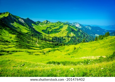 Beautiful mountainous landscape, fresh green plants and trees on high Alpine mountains, majestic panoramic scene, traveling and tourism concept - stock photo