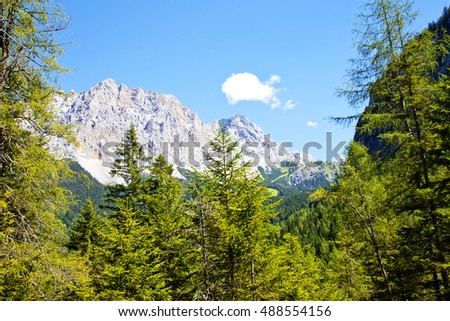 Beautiful mountains and trees near Biberwier, Tirol, Austria