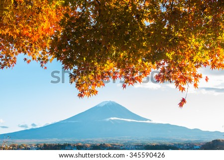 Beautiful Mt Fuji with Red Maple tree in Autumn