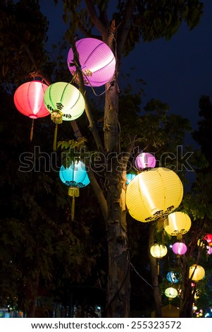 beautiful multi color chinese lantern is colorful on tree, Happy Chinese New year - stock photo