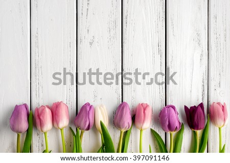 Beautiful multicolored tulips on wooden background. Top view, copy space. Space for text, copy, lettering. Postcard template.