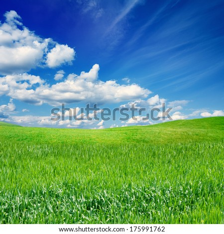 Beautiful nature eco background - green grass field, blue sky, white clouds, season spring