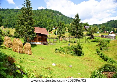 Beautiful nature in an eco friendly romanian village in  the Carpathians Mountains
