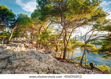 Beautiful nature of Calanques on the azure coast of France. Calanques - a deep bay surrounded by high cliffs. - stock photo