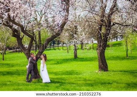 Beautiful newlywed couple having a stroll in park at spring