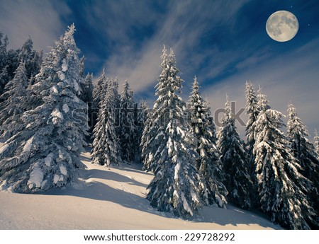 Beautiful night scenery in the mountains at winter - stock photo