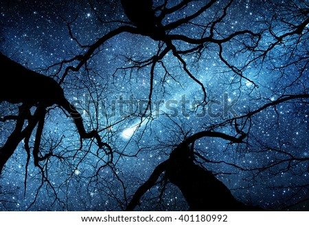 Beautiful night sky, the Milky Way, meteor and the trees. Elements of this image furnished by NASA. - stock photo