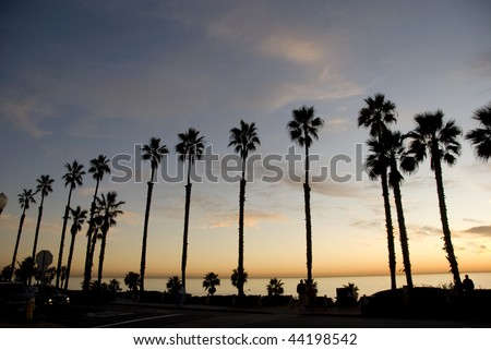 Beautiful ocean sunset with palm trees in California - stock photo