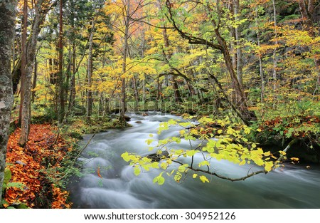 Beautiful Oirase River flowing through the autumn forest of Towada Hachimantai National Park in Aomori Japan ~ Scenery of northeastern Japan in brisk colorful fall season ( long exposure effect ) - stock photo
