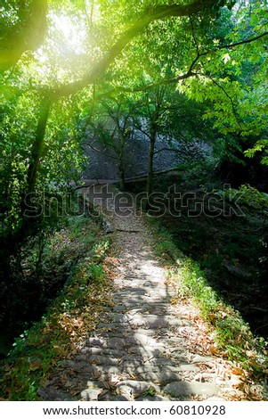 Beautiful old bridge standing in wild rainforest - stock photo