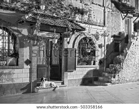 Beautiful old street, Alpine Provence, France. Old style, black - white photo.