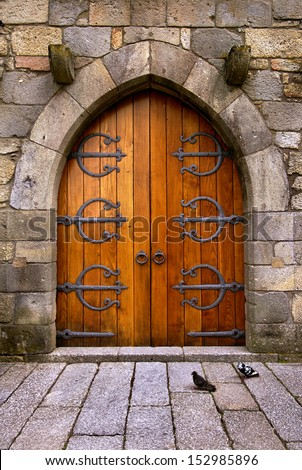 Beautiful old wooden door with iron ornaments in a medieval castle - stock photo