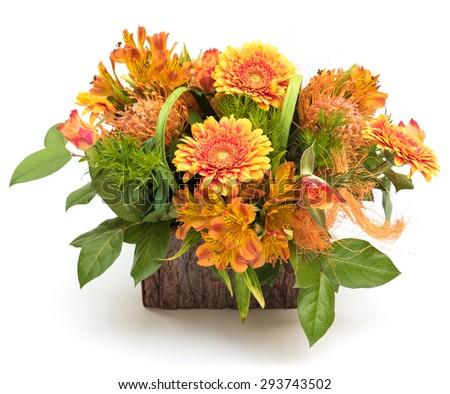 Beautiful orange flower piece in trunk tree basket isolated on white background - stock photo