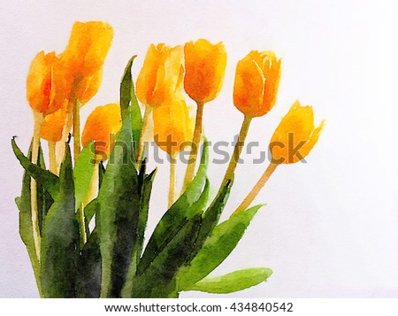 Beautiful Painting Of Yellow Tulips On White