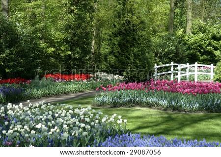 Beautiful park - stock photo