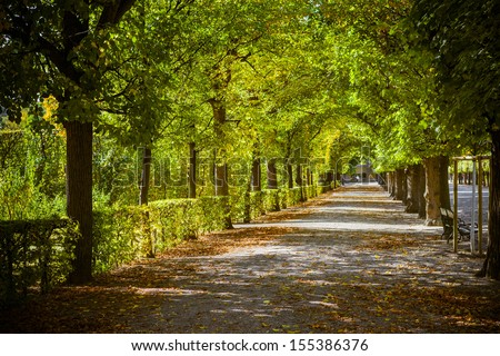 Beautiful park alley in autumn - stock photo