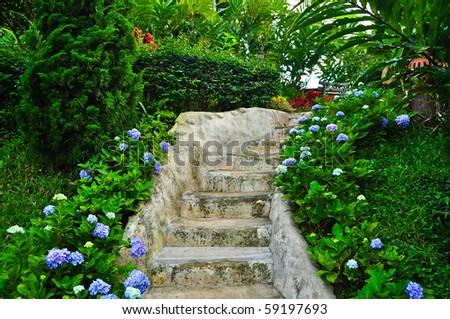 Beautiful park garden - stock photo