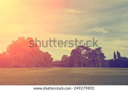 Beautiful park in sunset - stock photo