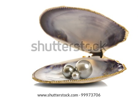 Beautiful pearls in a shell on pure white background