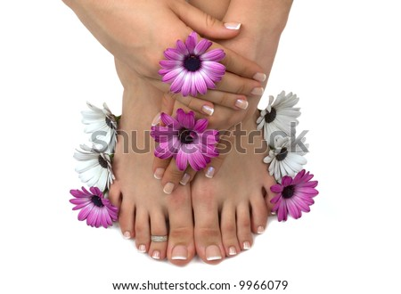 Beautiful pedicured feet and manicured hands with colorful spring daisies in a spa - stock photo