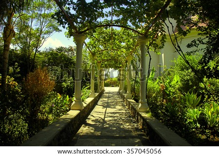 Beautiful pergola passage alley in the summer garden, Israel. Toned image - stock photo