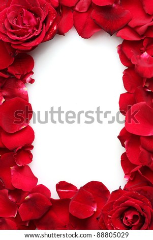 beautiful petals of red roses and roses isolated on white - stock photo