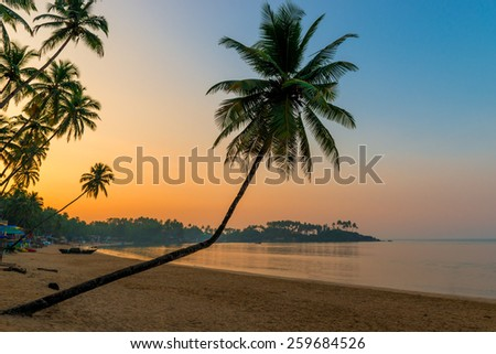 beautiful picture in the pre-dawn time in the tropics - stock photo