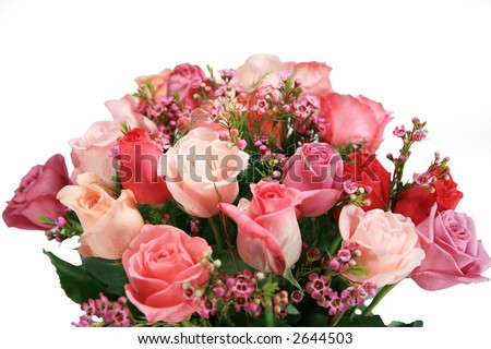 Beautiful pink and purple bouquet of Roses Isolated on white