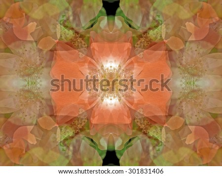 Beautiful pink Dogwood blossoms opening to the spring sunshine, make a great subject for high-color abstract design.  This image, with its intricacy, reminds me of a Renaissance tapestry.   - stock photo