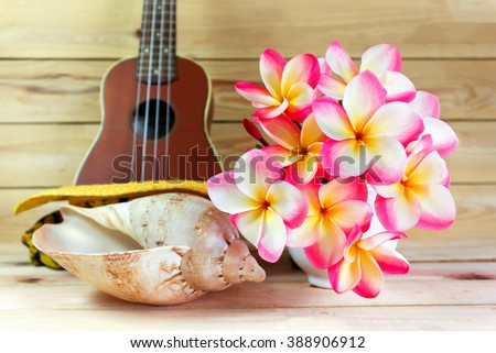 Beautiful pink flower plumeria or frangipani bunch in white cup with sea conch shell and blurred ukulele on jointed wood background with summer feeling and copy space
