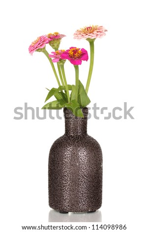 beautiful pink flowers in vase isolated on white - stock photo