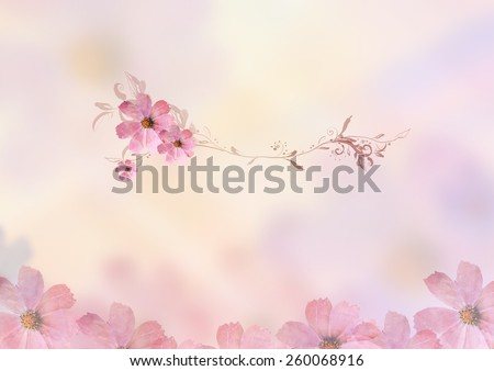 beautiful pink flowers with brunches design for writing tittle over blur background. Pastel, sweet, romantic, valentine, birthday, invitation, wedding, natural, soft, spring concept design background - stock photo