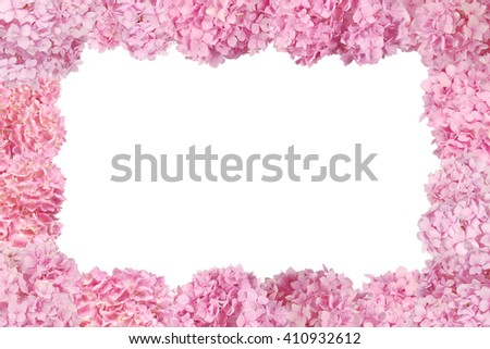 Beautiful Pink hydrangeas flower frame. Natural color. Isolated on white - stock photo
