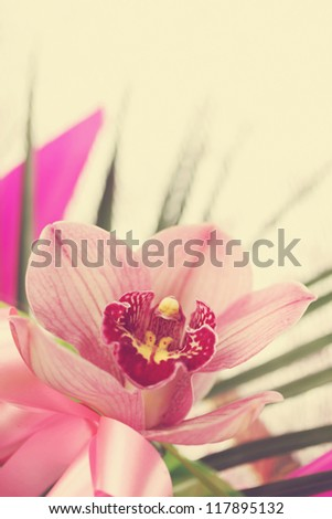 Beautiful pink orchid Orchidaceae in a bouquet - stock photo