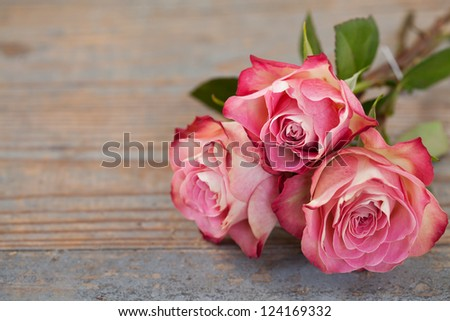 Beautiful pink roses on wooden background - stock photo
