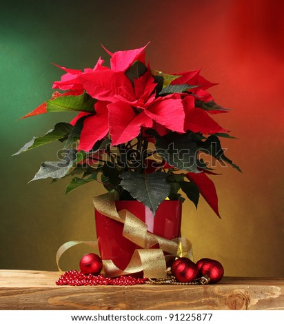 beautiful poinsettia in flowerpot, gifts and Christmas balls on wooden table on bright background - stock photo