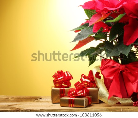 beautiful poinsettia in flowerpot, gifts and ribbon on wooden table on yellow background - stock photo