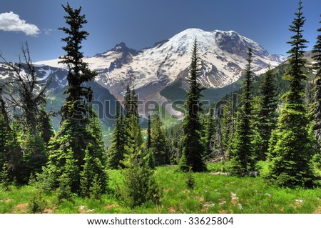 Beautiful portrait of Mt Rainier from Sunrise point with lush green meadows and conical pine trees - stock photo