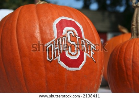 Beautiful pumpkins - stock photo